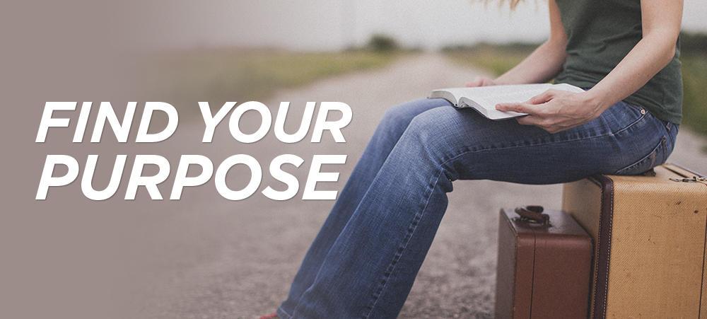 1c Find Purpose