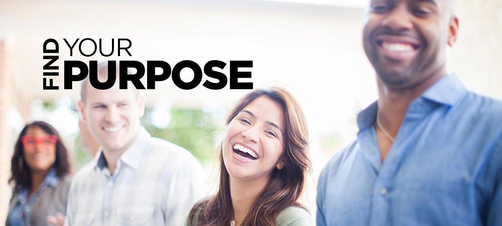 3c Find Purpose